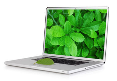 nature on laptop screen